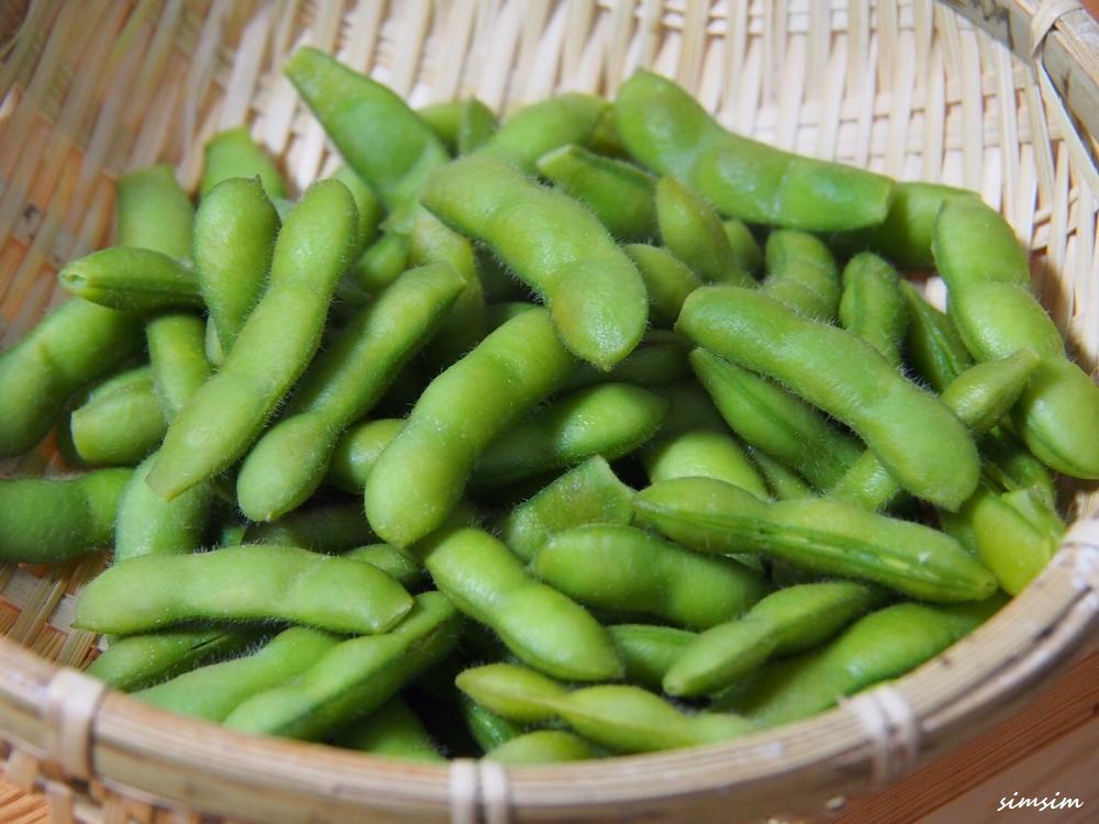 山梨明野枝豆摘み
