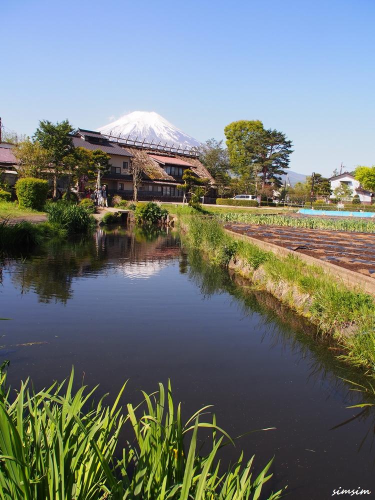 富士忍野八海