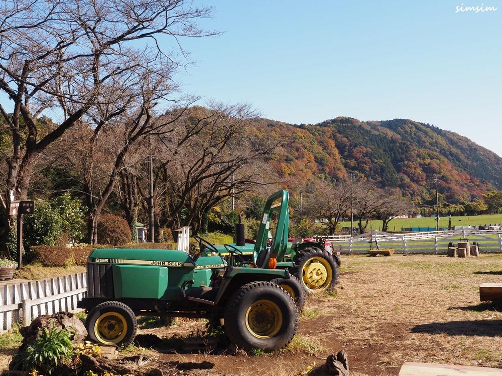 宮ケ瀬湖服部牧場