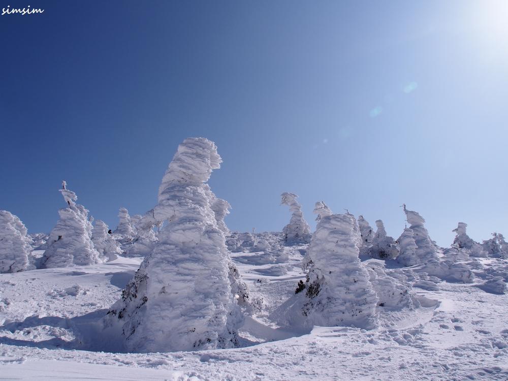蔵王温泉樹氷