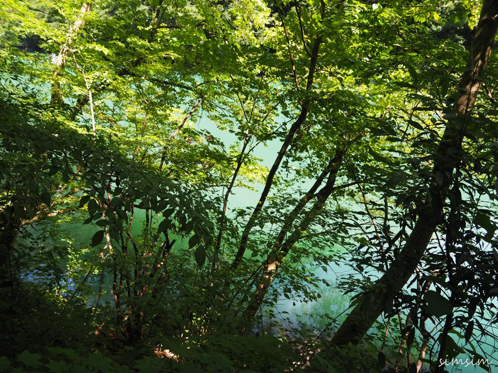 奥多摩鳩ノ巣渓白丸湖