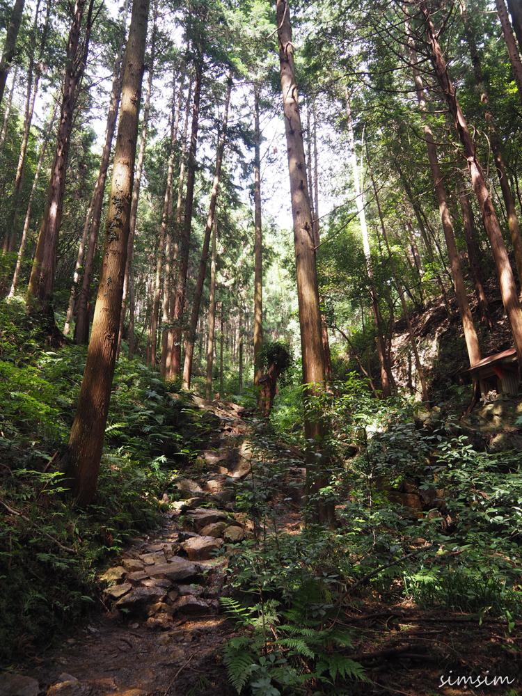 日和田山ハイキング
