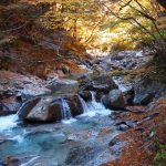 西沢渓谷紅葉