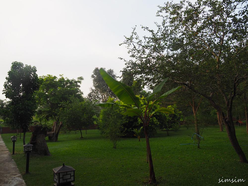 スリランカ旅行エレファスリゾート