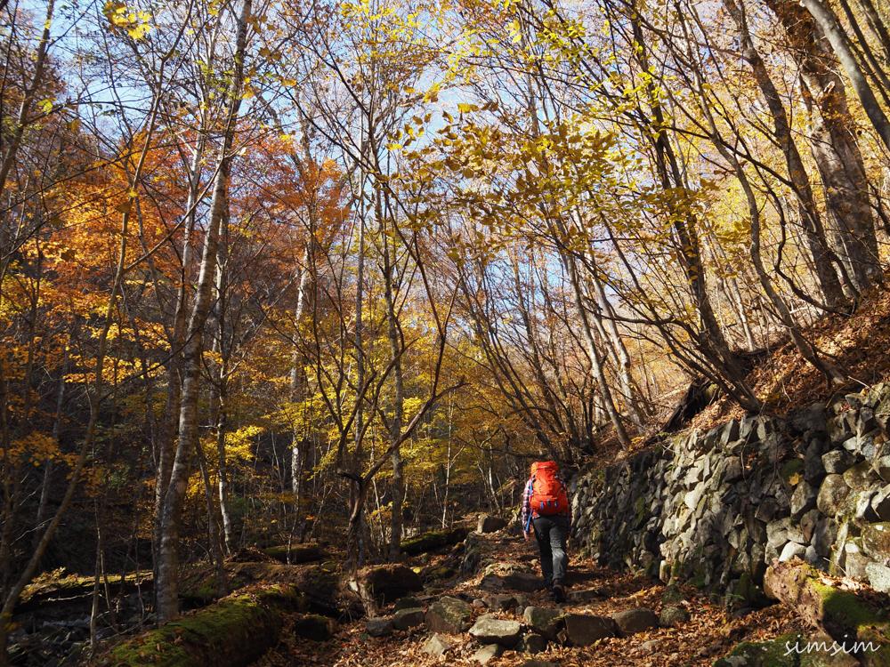 都民の森ハイキング