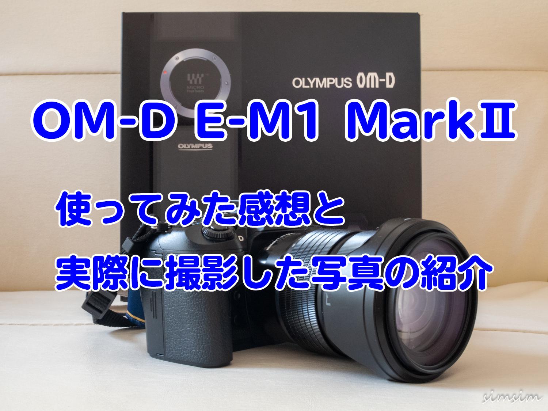 オリンパスミラーレスOMD EM1