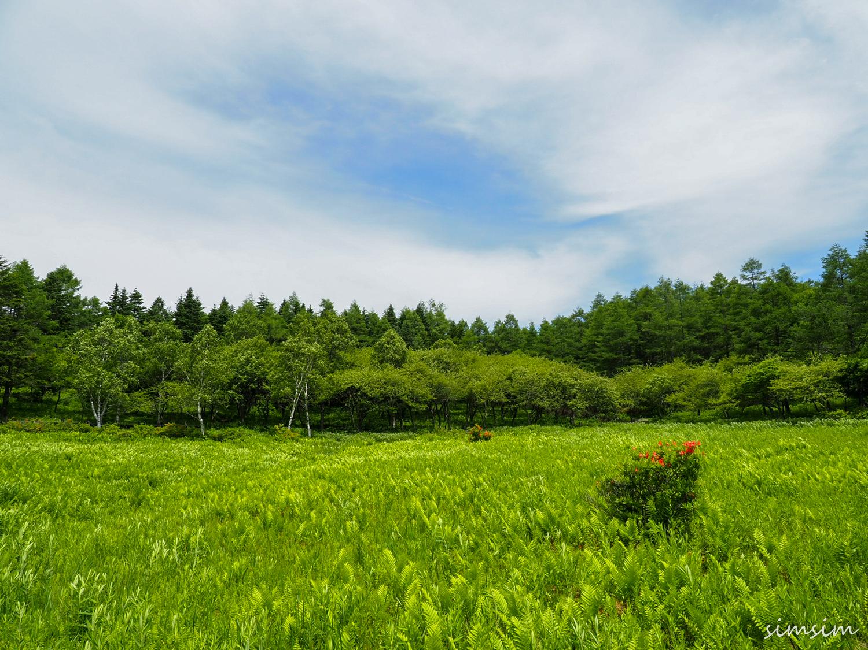 入笠山登山