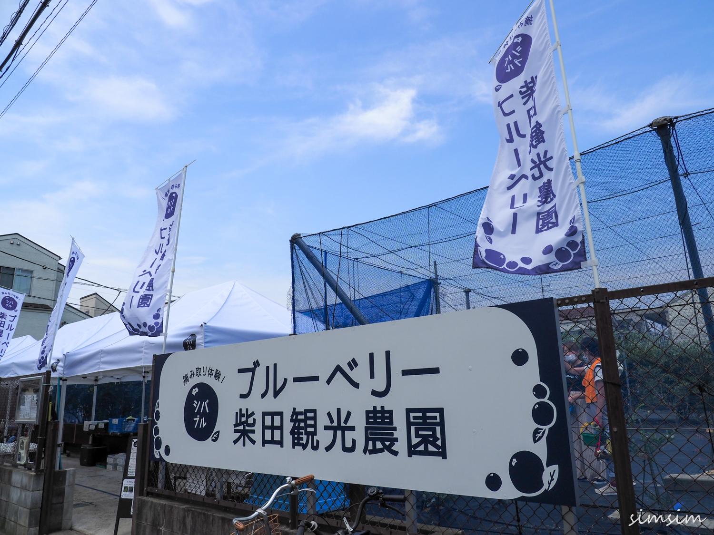 柴田観光農園