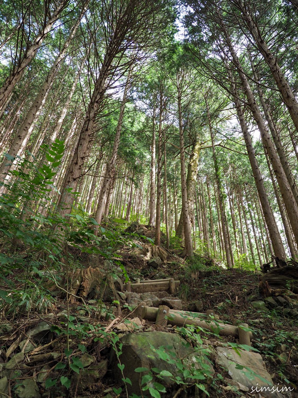 御岳山ロックガーデン