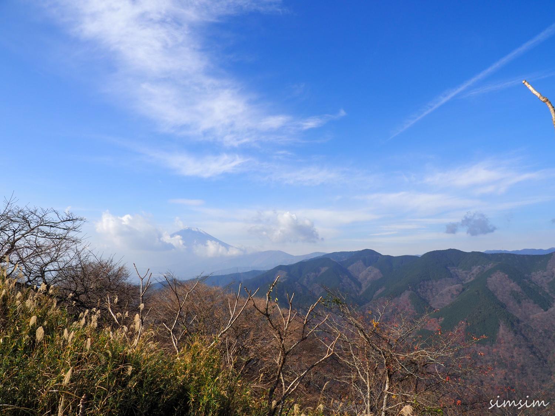 大野山登山